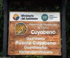 proteggiamo l'Amazzonia e il suo ambiente