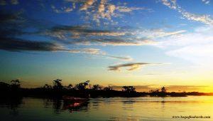 Amazzonia, la bellezza di un ecosistema incontaminato e delicato