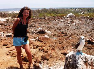 Animali da sogno alle isole Galapagos