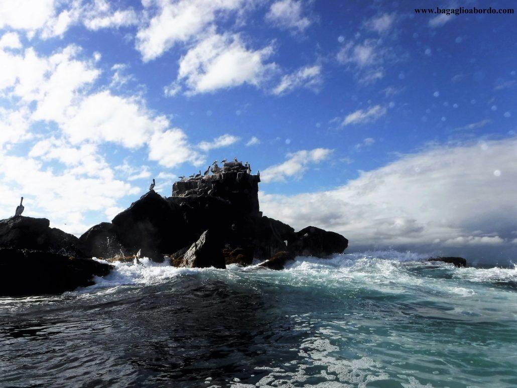 Galapagos quando andare