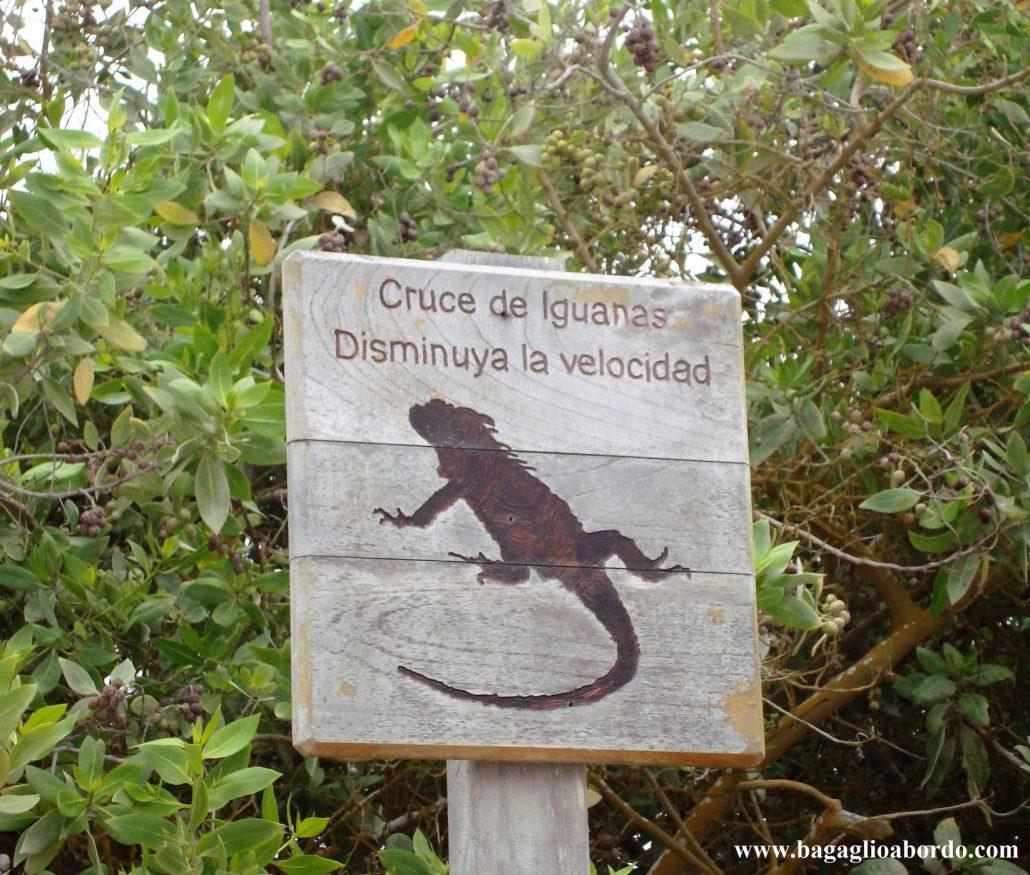 arcipelago delle Galapagos in Ecuador