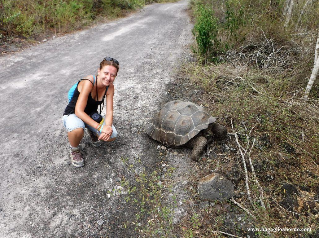 gli animali devono rimanere i sovrani delle isole Galapagos