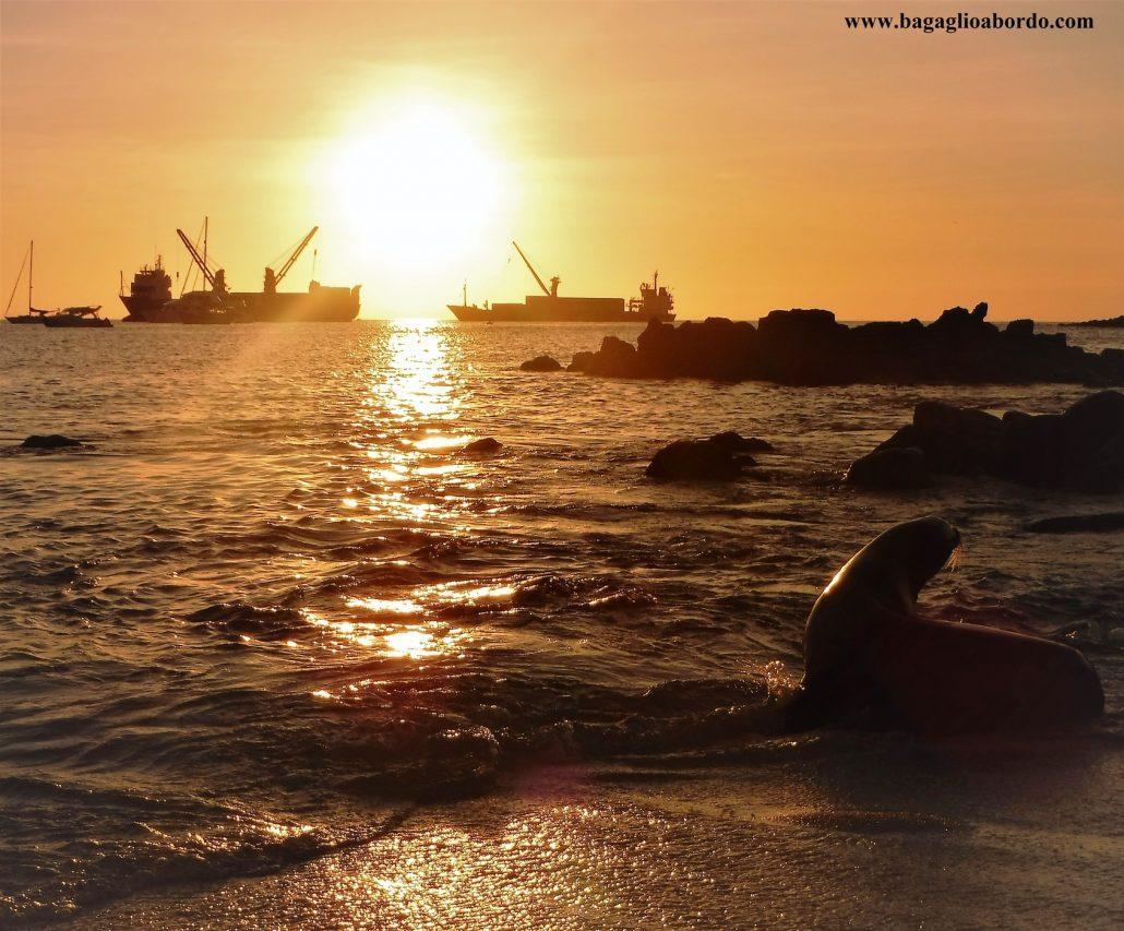 ale Galapagos viaggiare fa risparmiare
