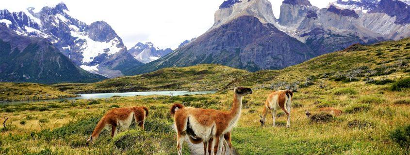 Patagonia meravigliosa natura
