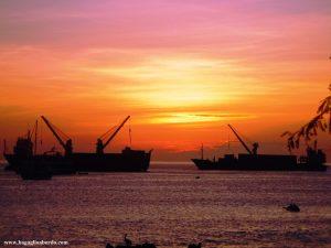 petrolio sul mare dell'isole Galapagos