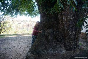 mete insolite in Bolivia